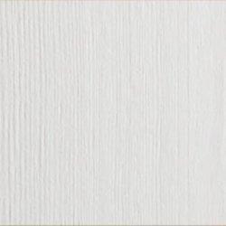 sosna barwiona na biel
